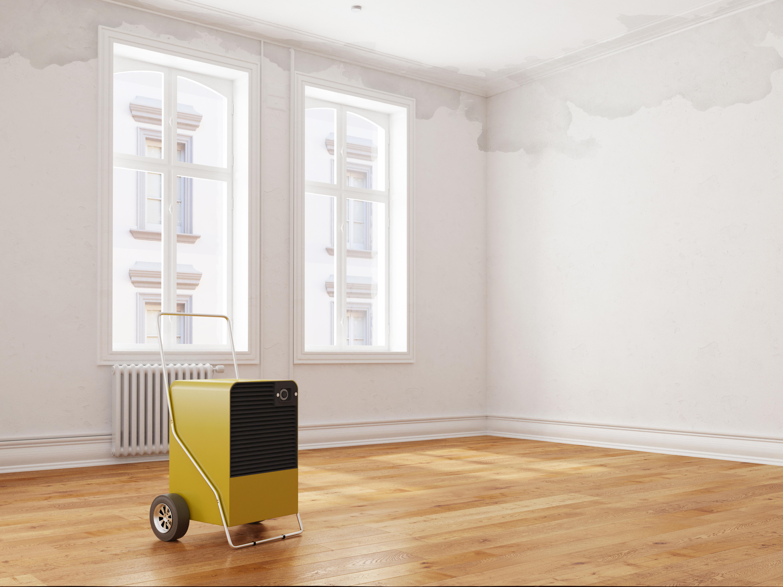 fugen in dusche erneuern fugen erneuern im badezimmer und agt fugen fr badezimmer dusche kche. Black Bedroom Furniture Sets. Home Design Ideas